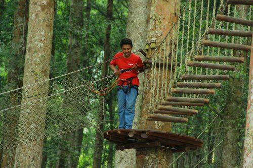 treetop@outingdibali.com