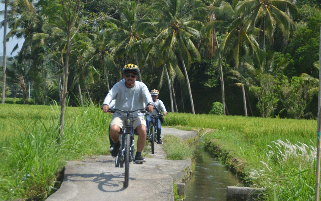 Bersepeda di Desa Ubud Bali dengan Pemandangan Persawahan